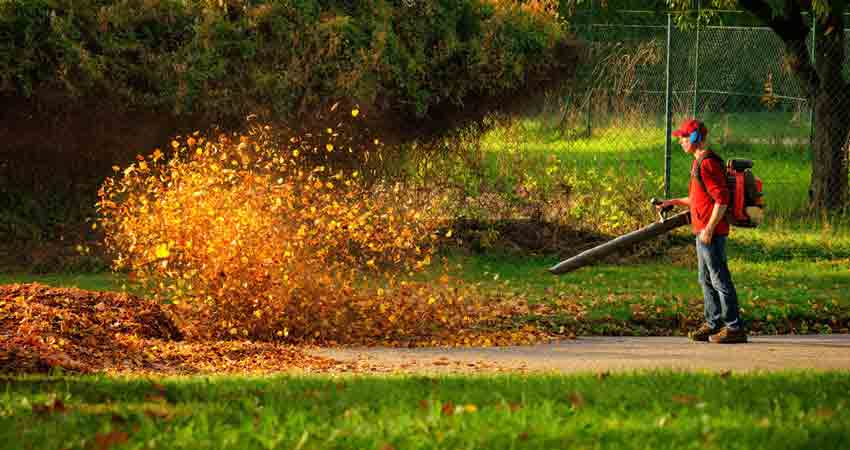Best Leaf Blowers Reviews